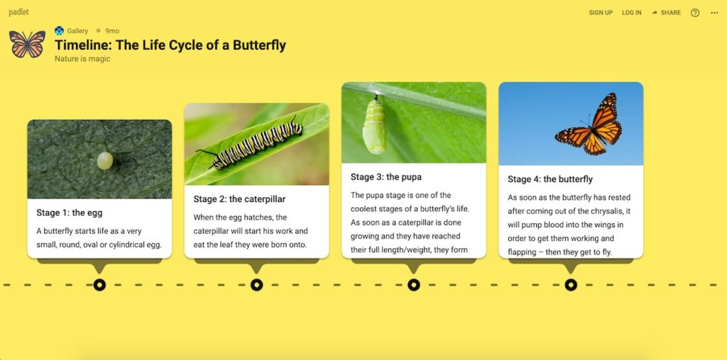 padlet example